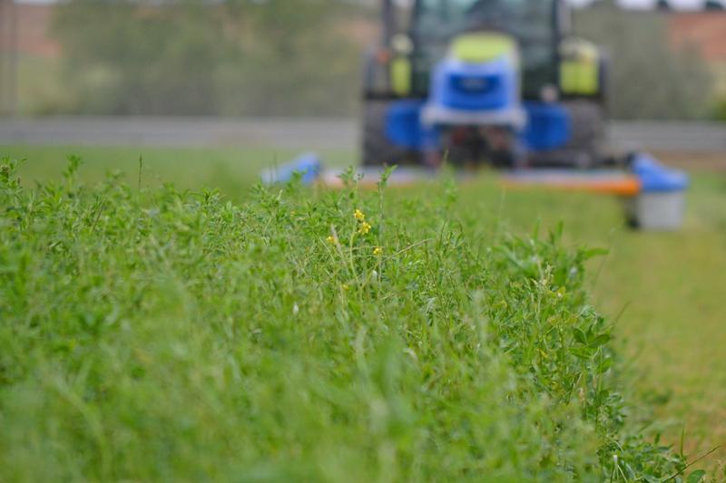 alfalfa hierba segadora frontal R8