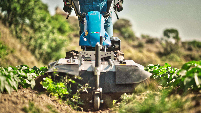 agricultura-ecologica-baix-llobregat-ridge-2