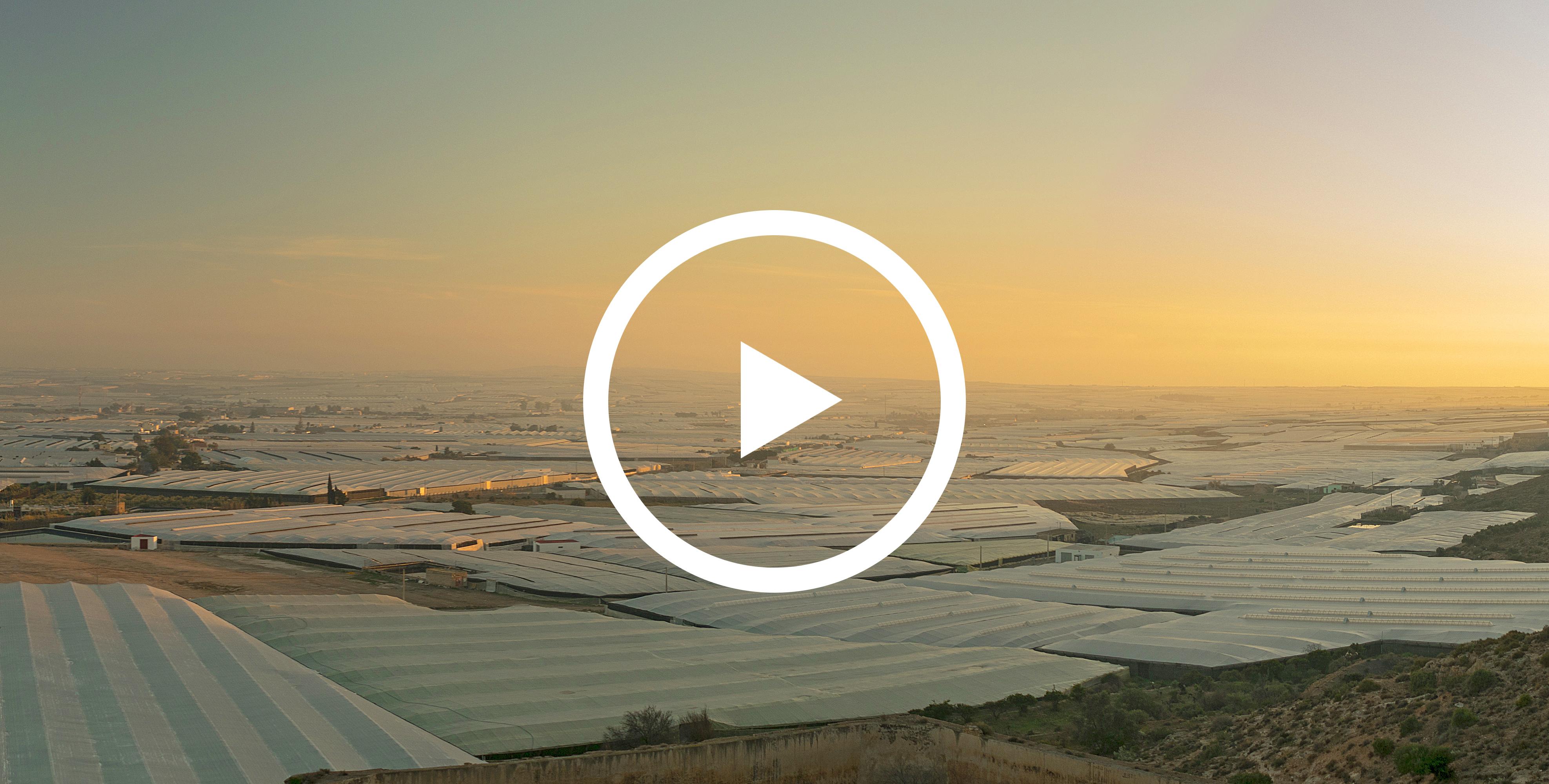 cultivo-ecológico-invernaderos-residuo-cero