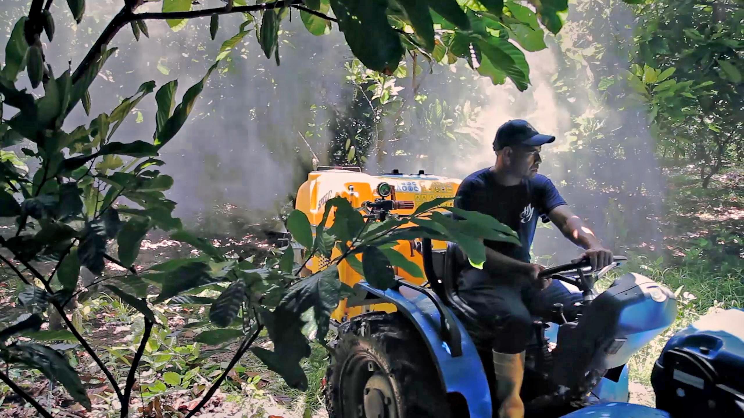 cultivo-cacao-ecologico-tractor-bcs-venezuela