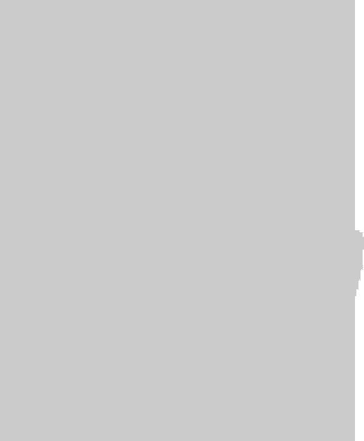 tortuga tartaruga inversor premium