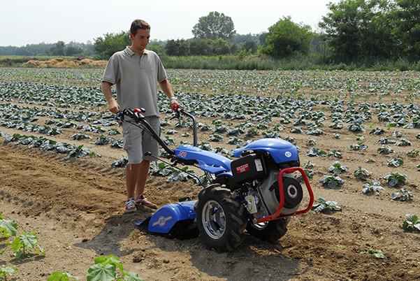 Pin fotos de motocultor agria 7714 con remolque on pinterest - Aperos para motoazada ...